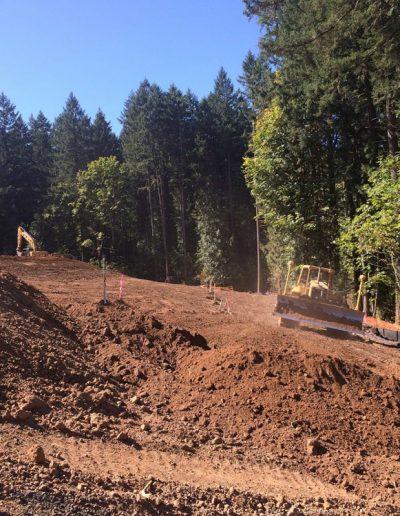 Bulldozer-site-construction-Oldham-Meadows-Subdivision-Beaverton-Oregon